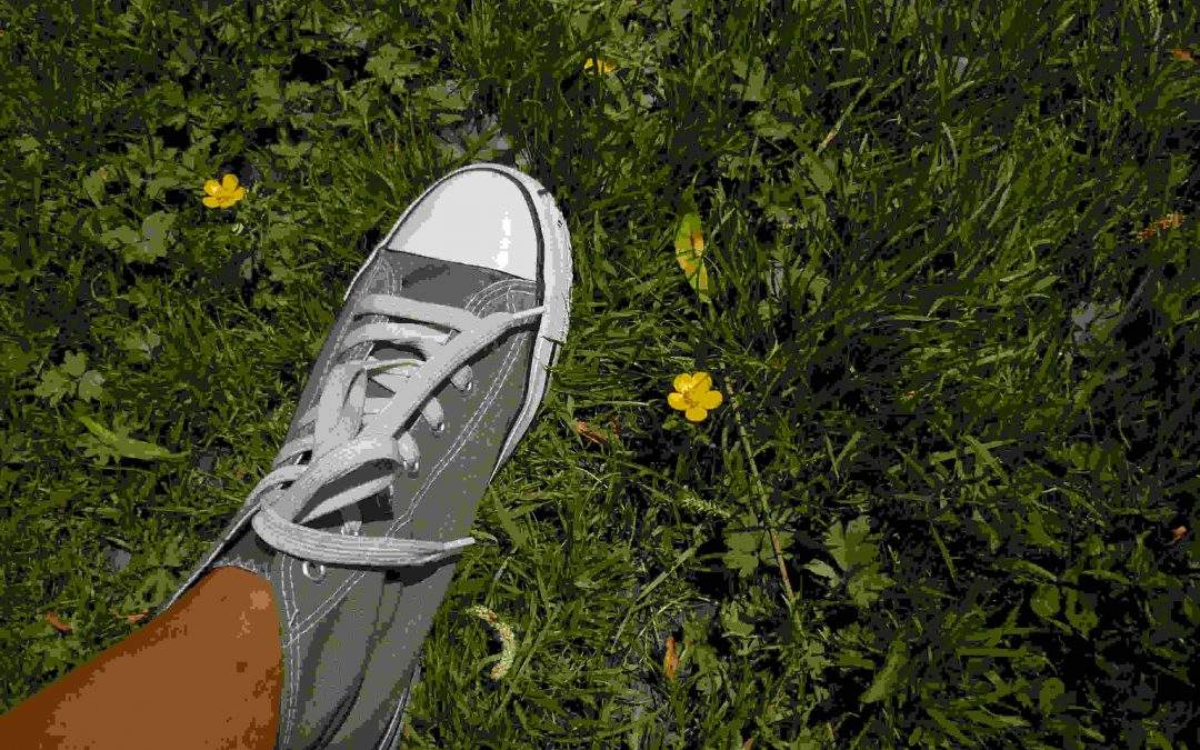 I want to grow roots…