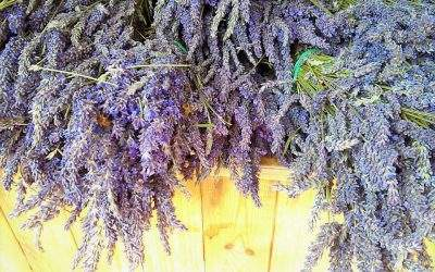 6 ways to enjoy lavender