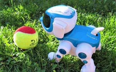 Teksta 360 Robotic Pup Review
